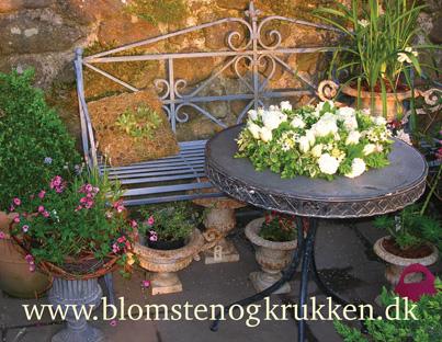 Blomsten & Krukken, køb stauder online