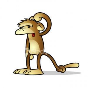 confused-monkey1